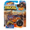 Hot Wheels Trucks 1:64