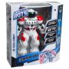 Roboter Guardian Bot