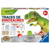 ScienceX traces dinosaures f