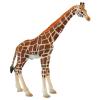 Giraffen Bulle