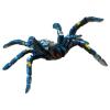 Blaue Ornamentvogelspinne