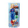 DC Super Hero Girls Puppe
