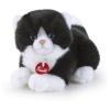 Katze weiss-schwarz Trudino