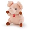 Schwein Sweet Collection