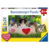 Puzzle chatons au repos