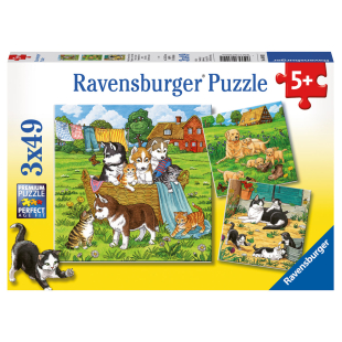 Puzzle Katzen u. Hunde