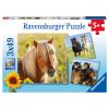 Puzzle Liebe Pferde