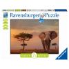 Puzzle Elefant im Masai Mara