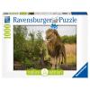 Puzzle Stolzer Löwe