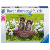 Puzzle Picknick auf d. Wiese