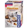 Ausgrabungset Fossilien, d