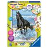 Malset Pferd am Strand