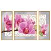 Malset Wilde Orchidee