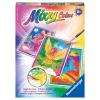 Mixxy Colors Pegasus