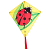 Drachen Eddy Ladybug