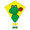 Cerf-volant Eddy Happy Frog