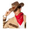 Cowboyhut mit Federn, braun