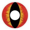 Kontaktlinse rote Eidechse