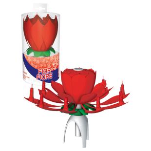 Zimmerfontäne Blumen rot