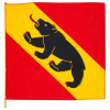 Fahne BE, Stoff, 30x30 cm