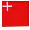 Fahne Schwyz, 20x20 cm