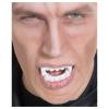 Vampir Gebiss