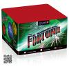 Batterie Fortuna